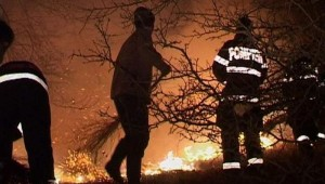 incendiu vegetatie uscata