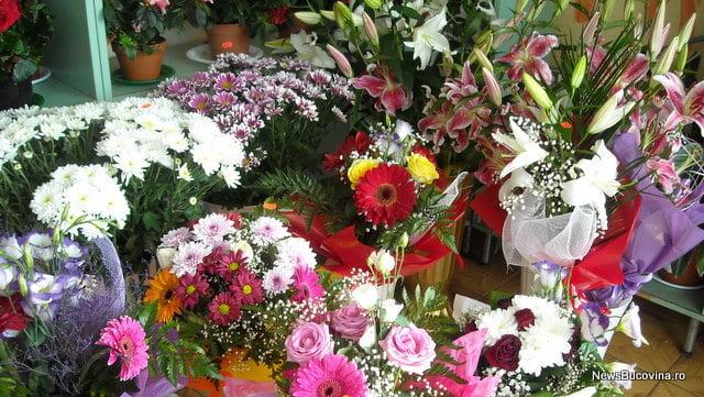 Flori Olanda2