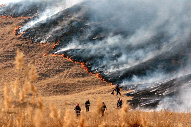 incendiere vegetatie uscata
