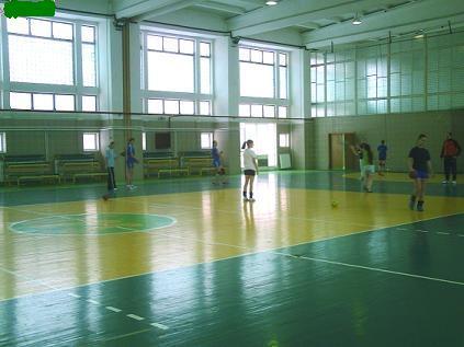 handbal feminin LPS