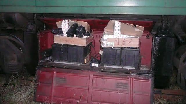 tigari locomotiva tren 2