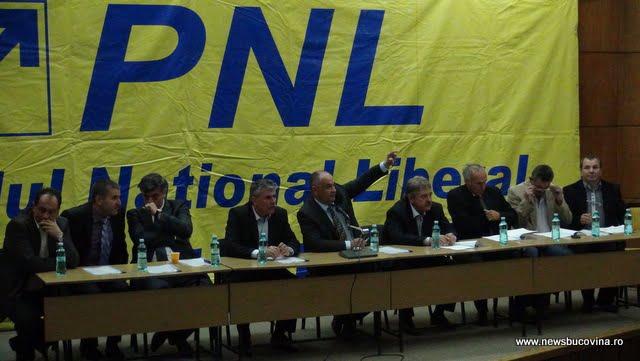 pnl delegatia permanenta