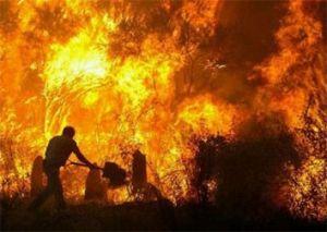 incendiu violent