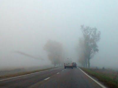 ceata