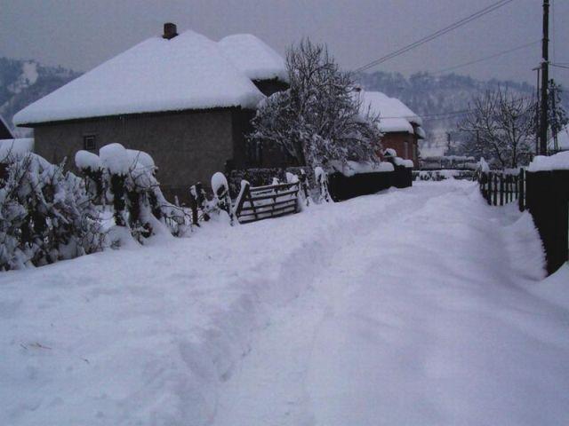 stalpi iarna