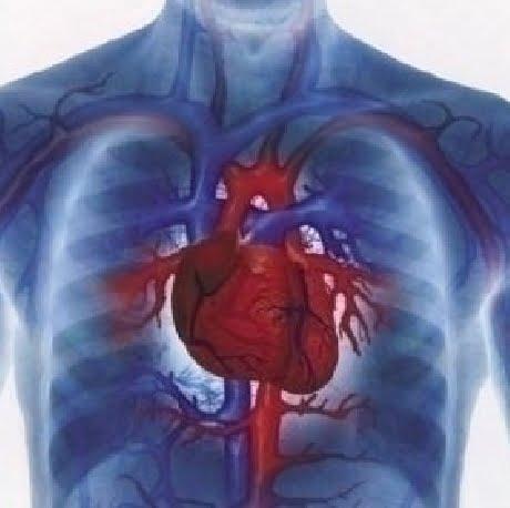 boli inima