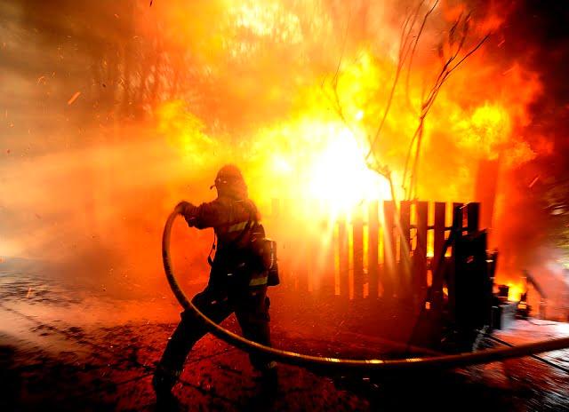 incendiu padure 04