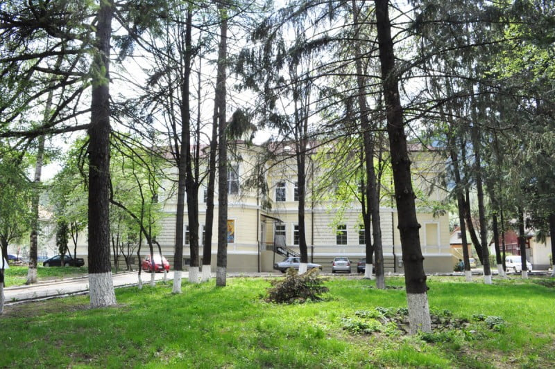 spital psihiatrie campulung moldovenesc