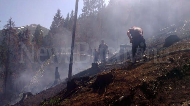 incendiu forestier 3