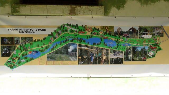 safari park Bucovina