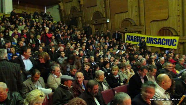 alegeri PNL 2013