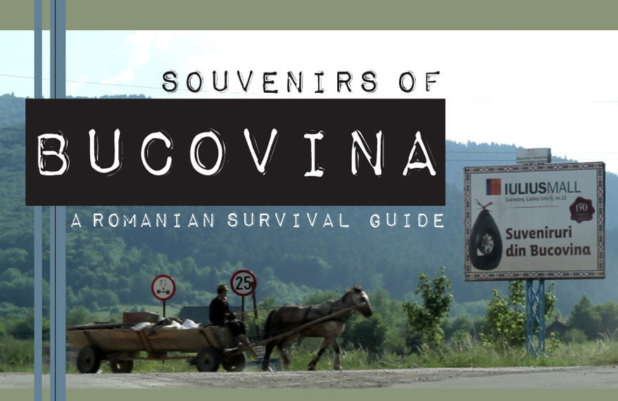 Bucovina_01