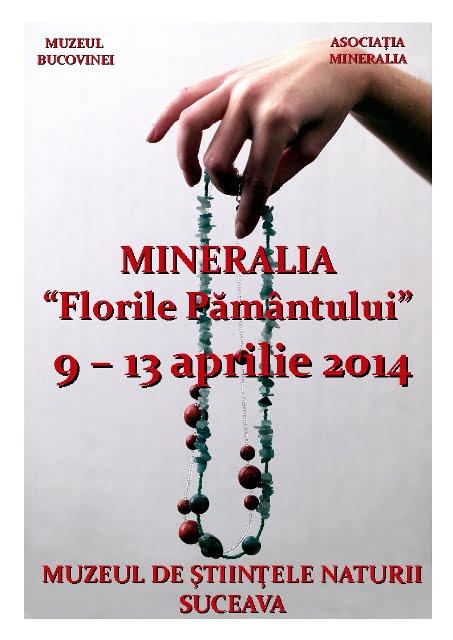 SV Afis Mineralia