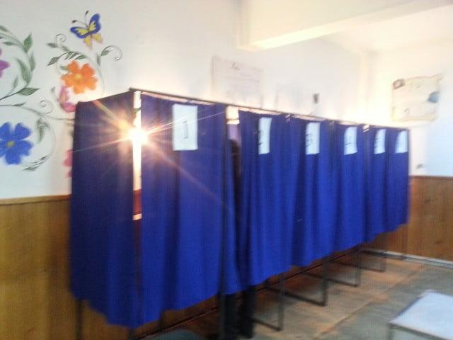 sinescu vot alegeri (4)