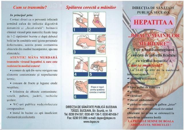 pliant hepatita pg 1