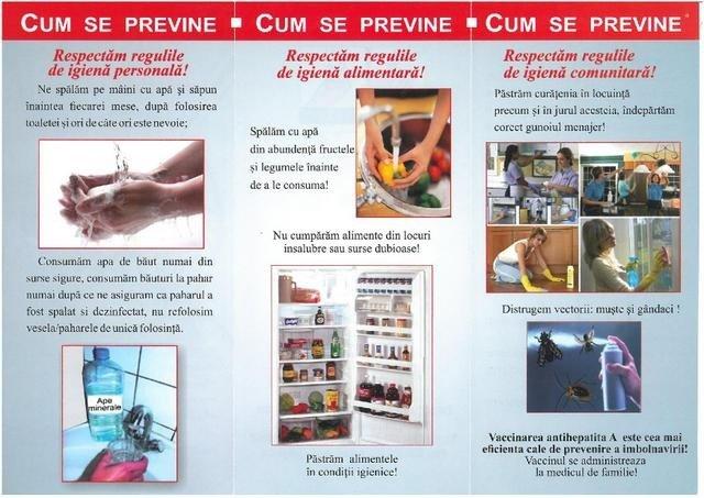 pliant hepatita pg 2