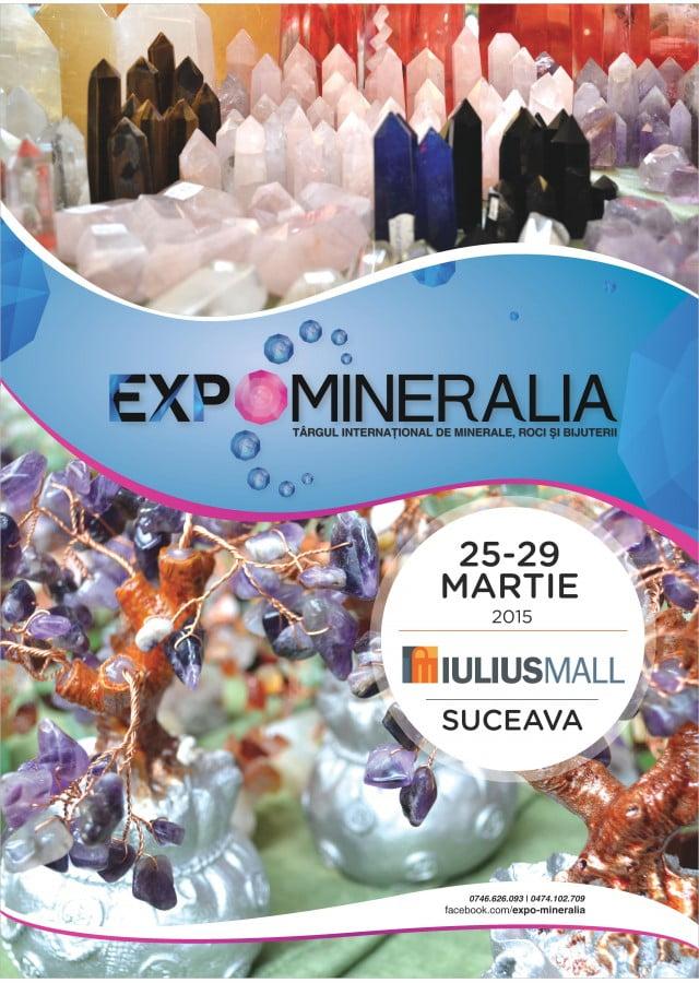 Expomineralia_IMSV_2015