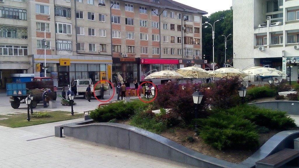 Suceava image5 (4)