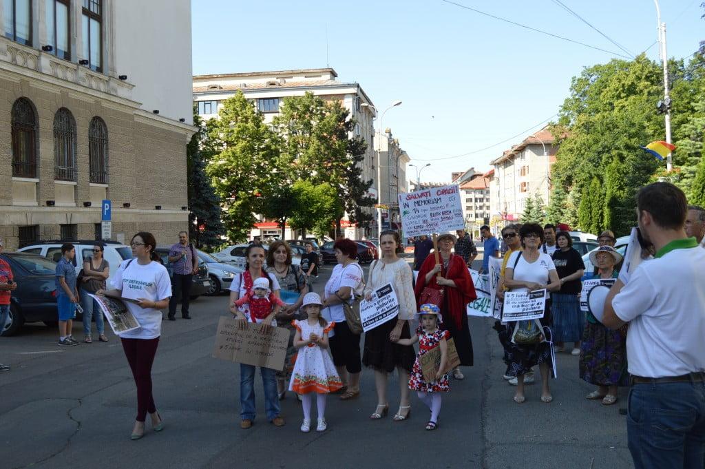 protest despaduriri (2)