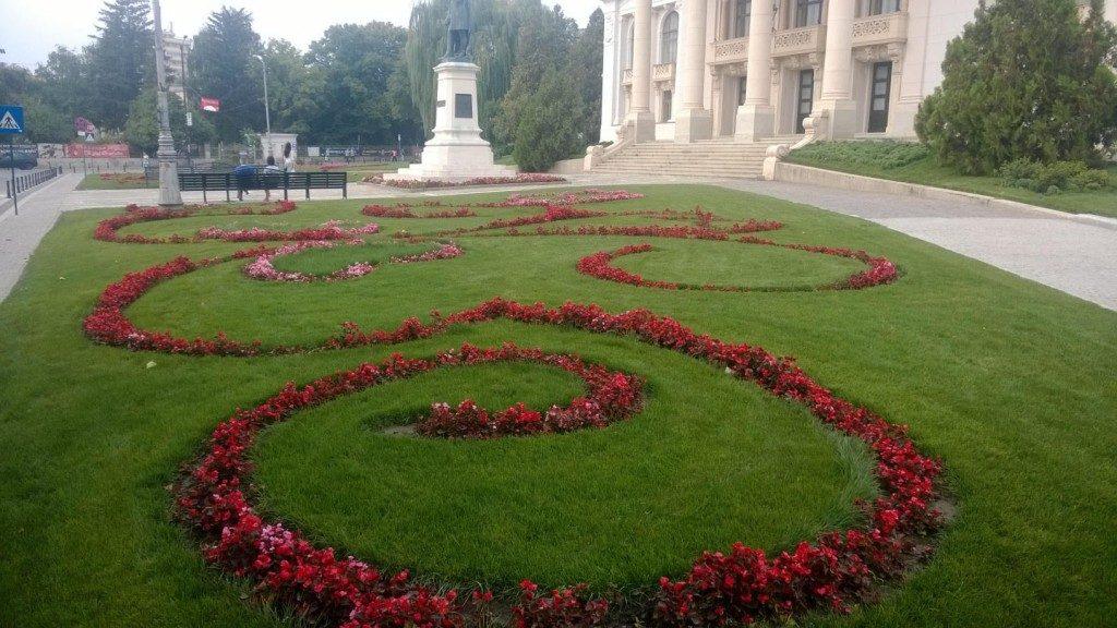 centru suceava flori (7)