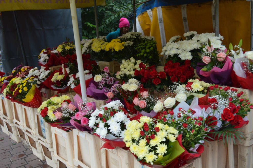 flori (11)