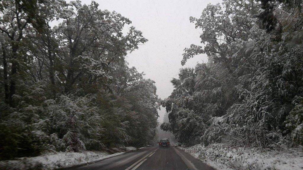 copaci, zapada, drum, ninsoare, iarna