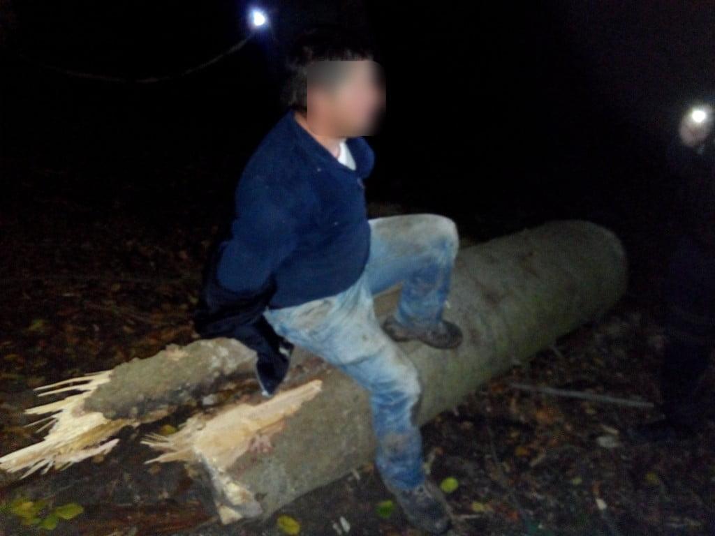 hot lemne