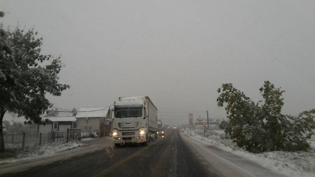 tir, iarna, ninsoare, drum