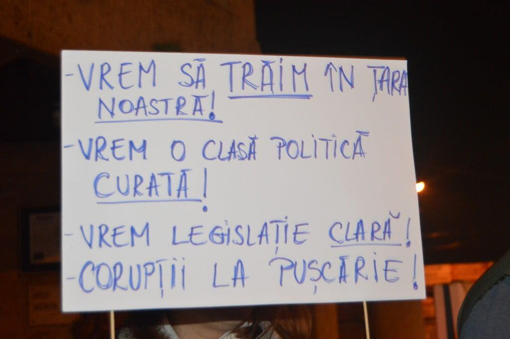 protest (13)politica