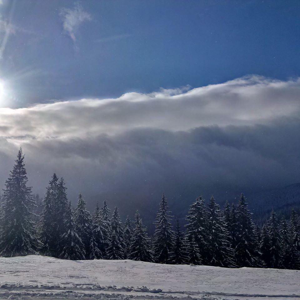 iarna, zapada rarau