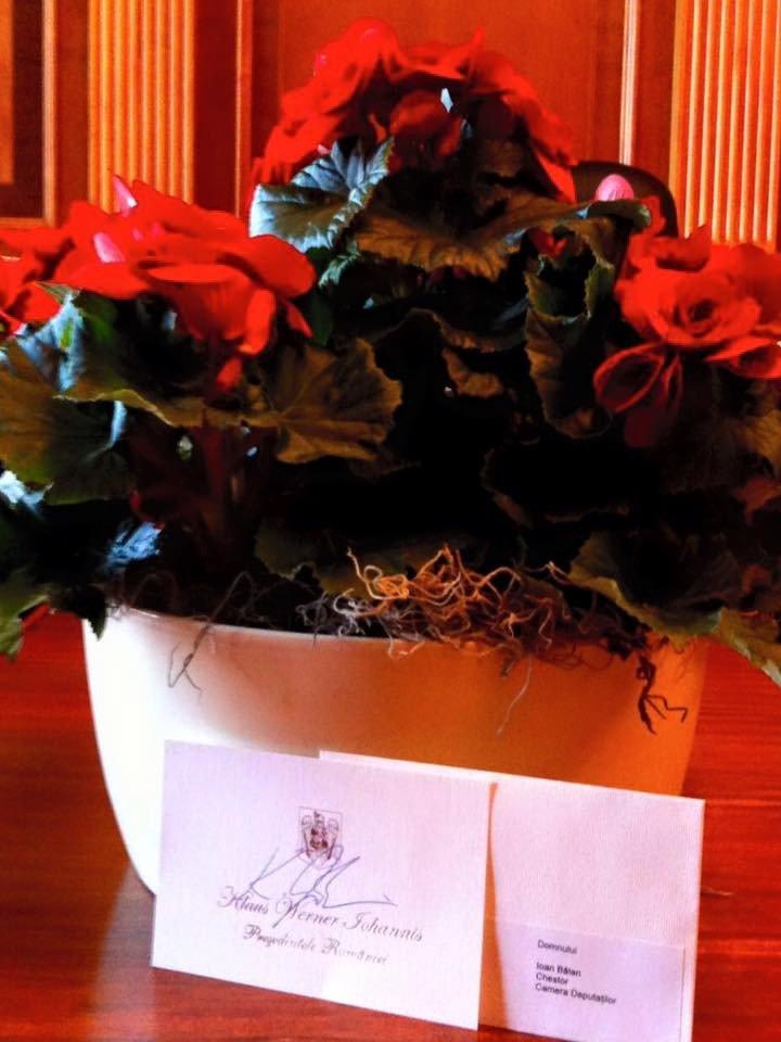balan ghiveci flori iohannis