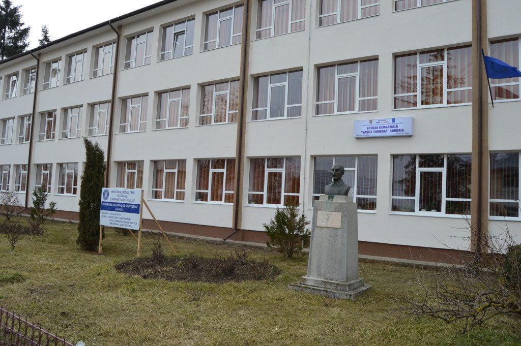scoala boroaia primara