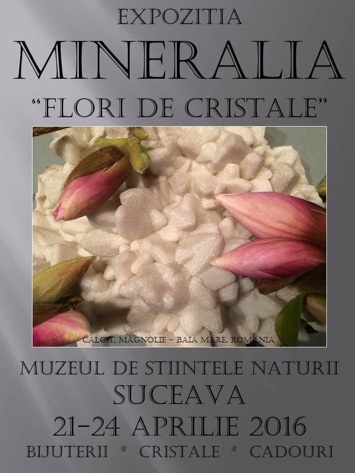 SUCEAVA Mineralia 2016
