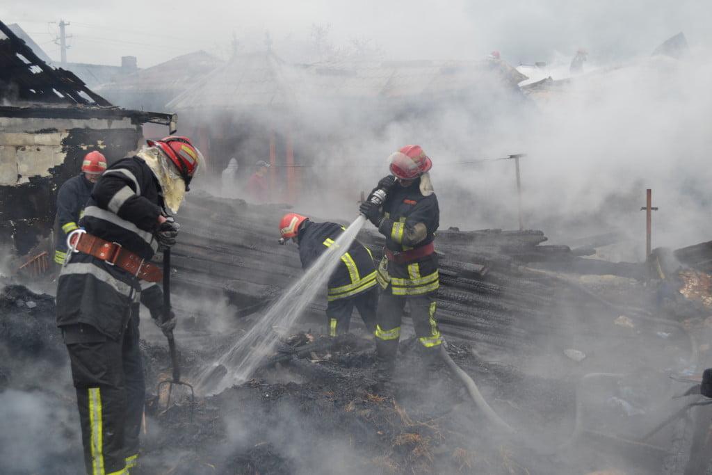 incendiu casa arbore (13)