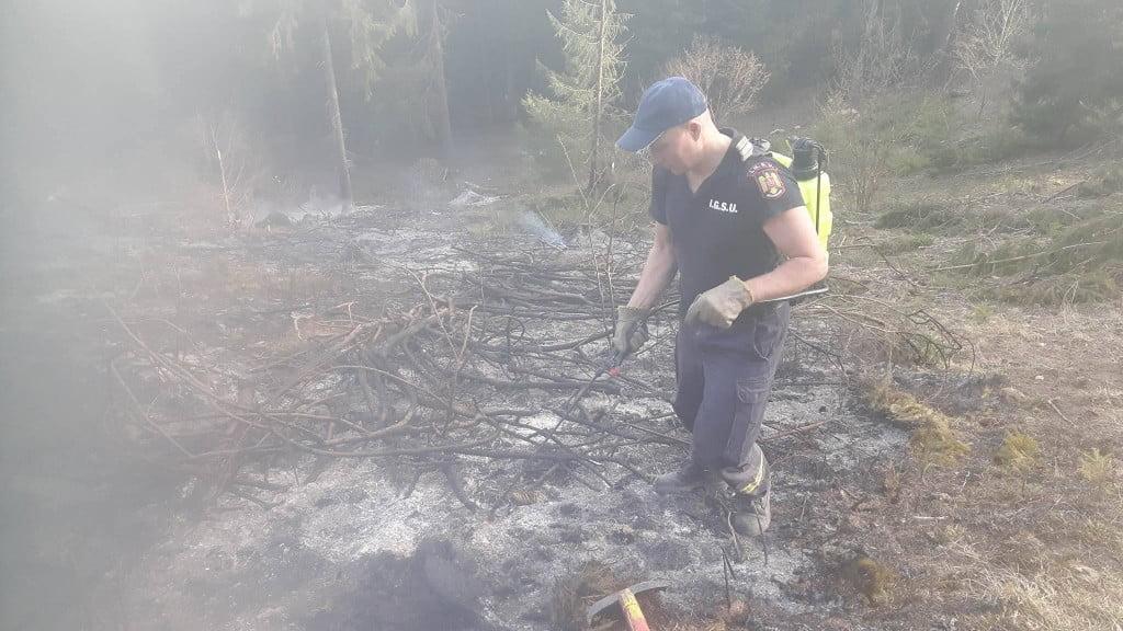 incendiu vegetatie (9)