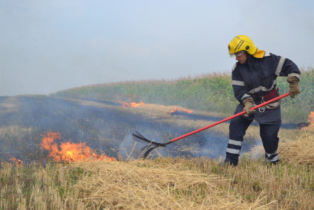 pompieri incendiu vegetatie uscata (10)