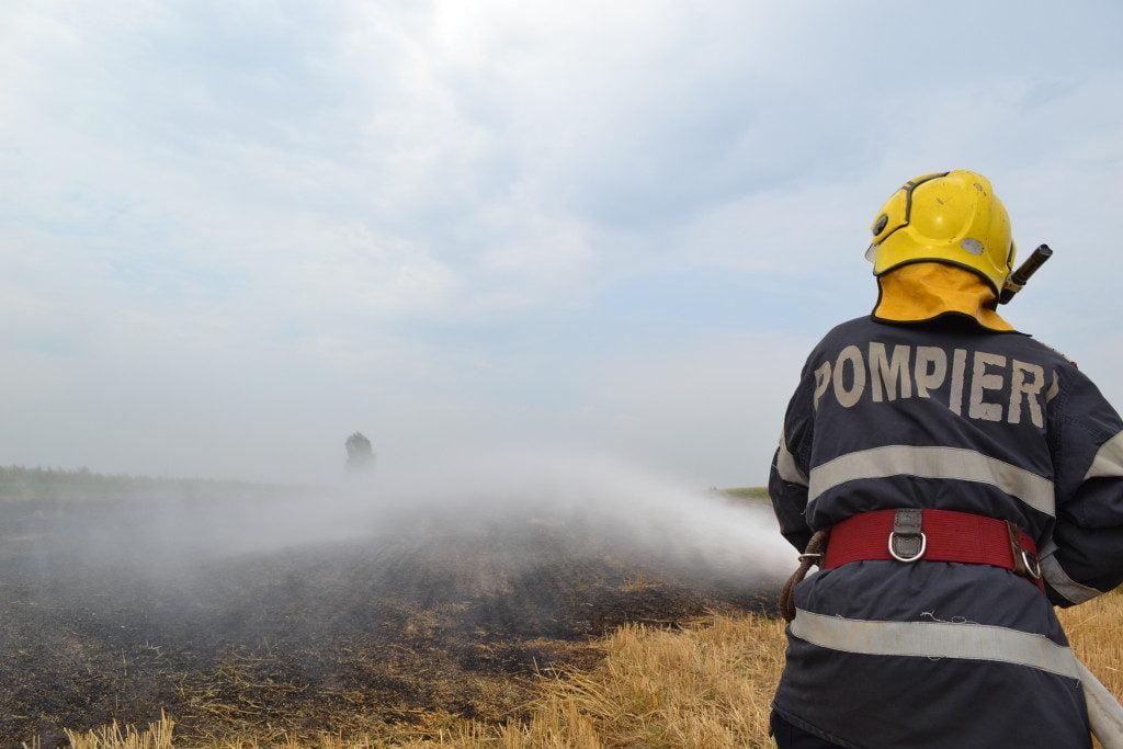 pompieri incendiu vegetatie uscata (8)