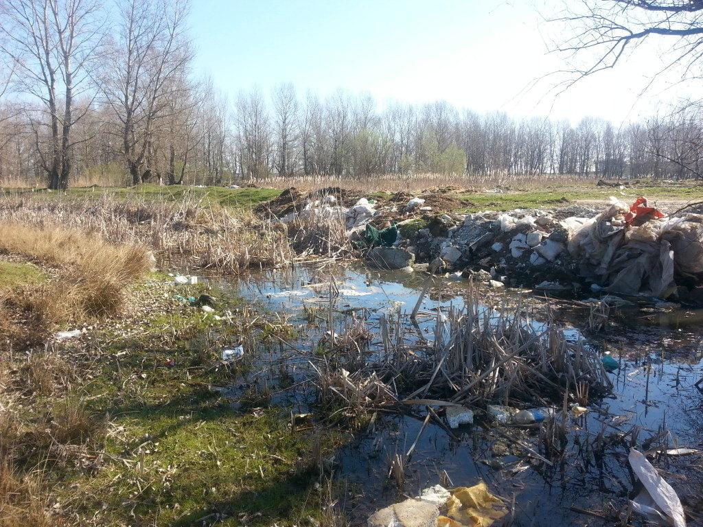 lunca râului suceava deşeuri gunoaie lunca (13)