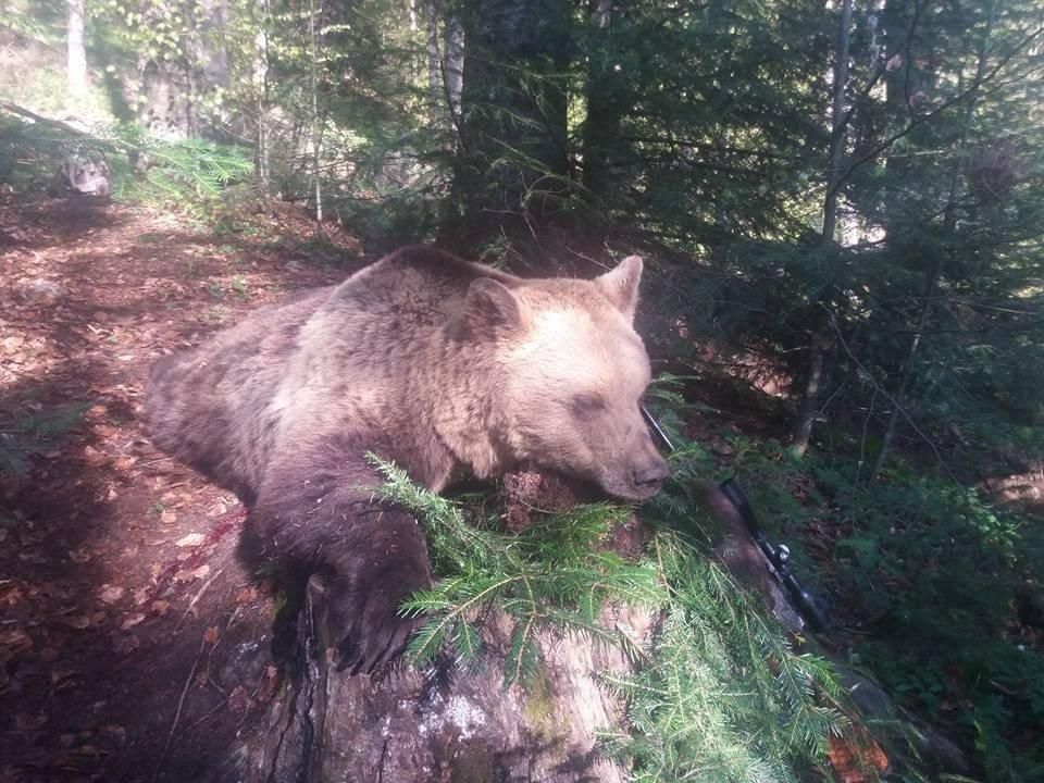 urs mort