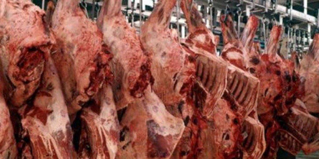 carne abator