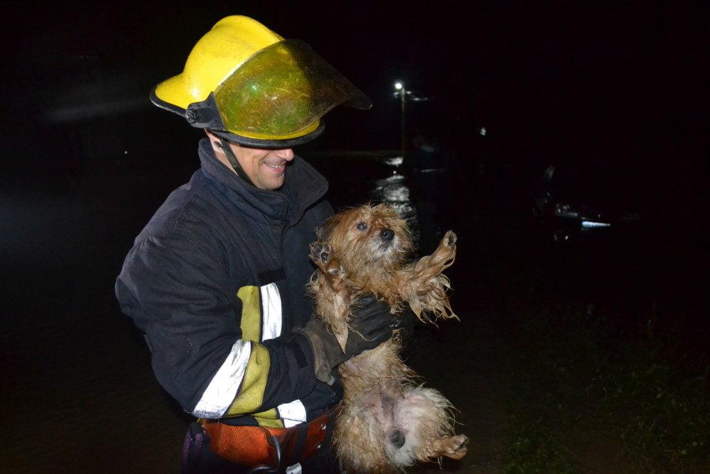 inundatii interventie isu pompieri (13)