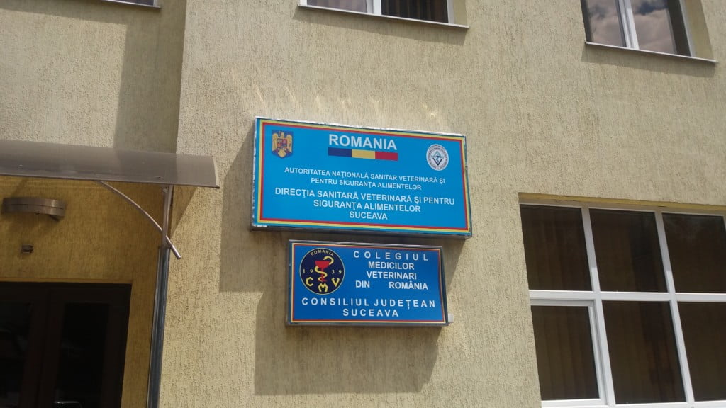 DSVSA Suceava (4)