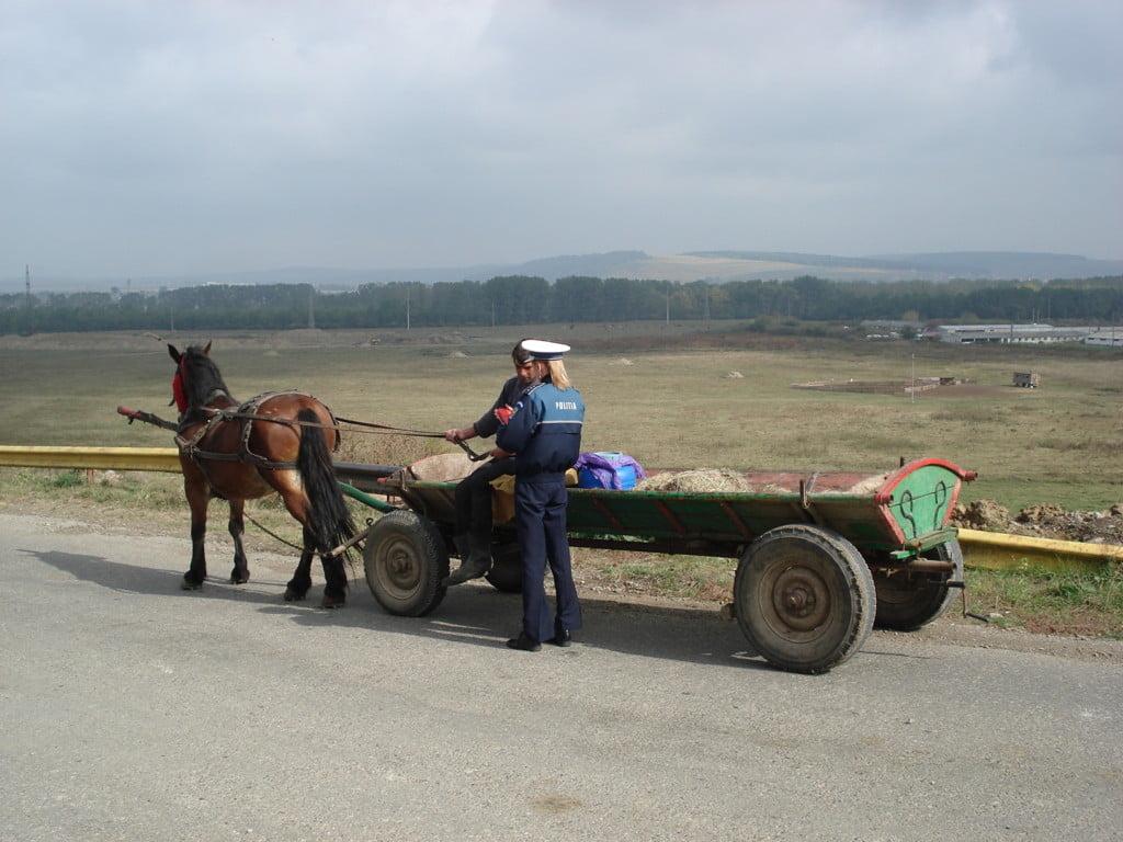 actiune politisti, carutasi (1)