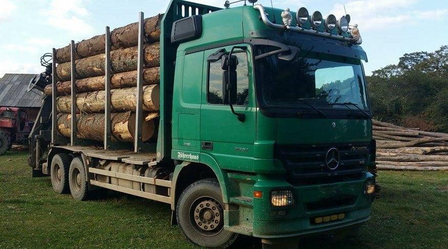 camion lemn 1
