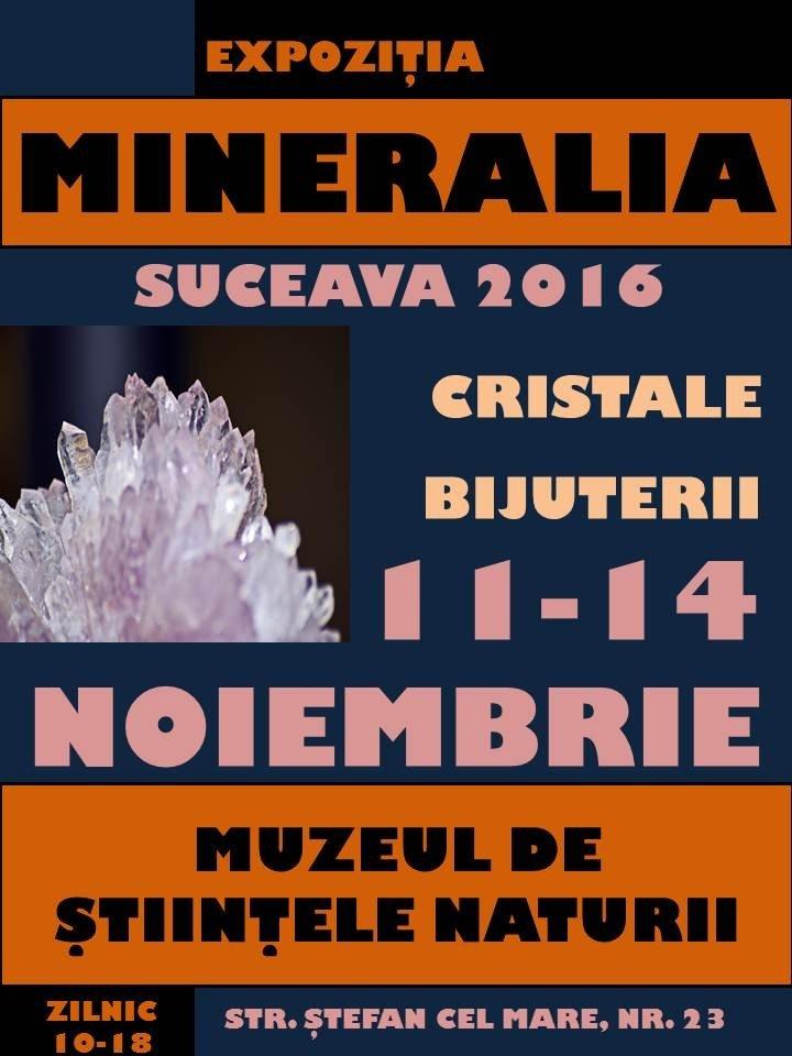 mineralia-1