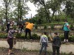plantare-copaci-scoala-preutesti-11