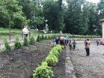 plantare-copaci-scoala-preutesti-12