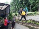 plantare-copaci-scoala-preutesti-3
