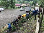 plantare-copaci-scoala-preutesti-9